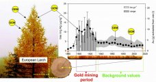 Larch tree rings: an archive of atmospheric Hg pollution