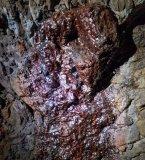 A lamina of iron-rich precipitate on the gallery wall.